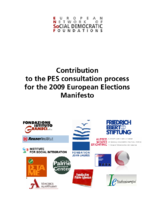 Contribution to the PES consultation process for the 2009 European elections manifesto